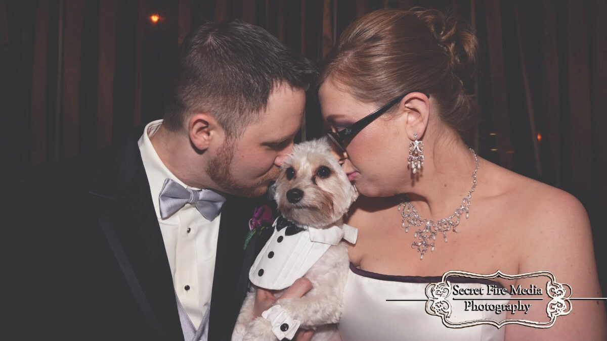 Bride and groom kiss dog at a Hudson Valley Wedding at The Poughkeepsie Grand Hotel